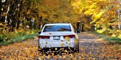 نصائح الاهتمام بالسيارة في فصل الخريف
